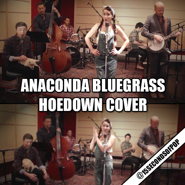 Vintage Bluegrass Anaconda Cover Video