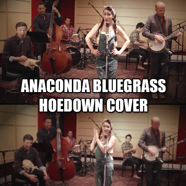 Vintage Bluegrass Anaconda Cover Video1